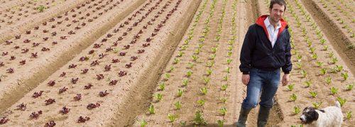 coltivare_in_sicurezza