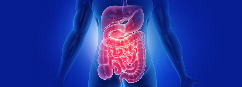 Gastroenterologia ed Endoscopia Digestiva - ASL CN2